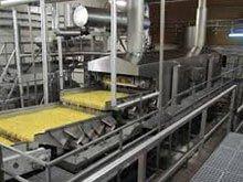 Micromod Food Processing